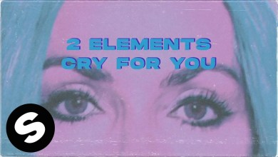 Photo of 2Elements – Cry For You Lyrics