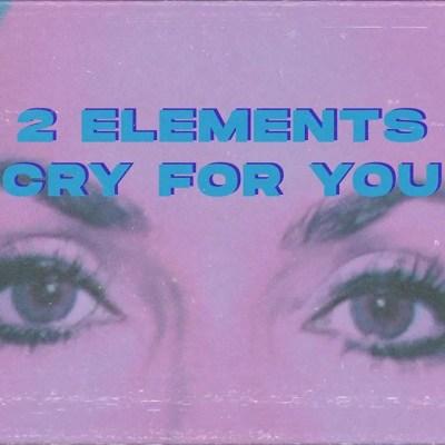 2Elements – Cry For You Lyrics
