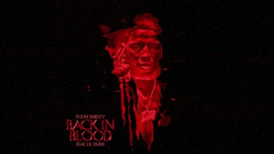 Photo of Pooh Shiesty Ft Lil Durk – Back In Blood Lyrics