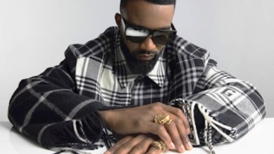 Photo of FALLY IPUPA Ft DADJU – Un coup Lyrics
