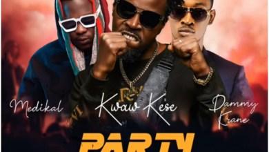Photo of Kwaw Kese – Party Rocker Ft Medikal & Dammy Krane