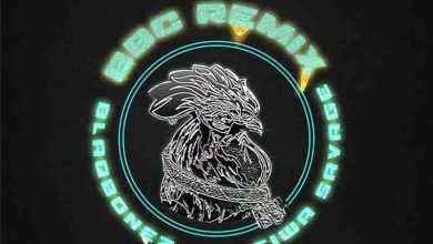 Photo of Blaqbonez – BBC Remix Ft Tiwa Savage