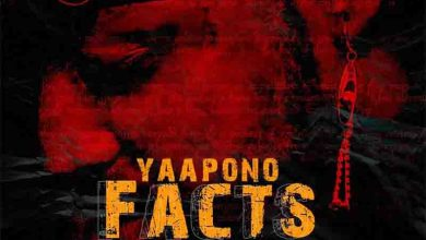 Photo of Yaa Pono – Facts (Shatta Wale Diss)