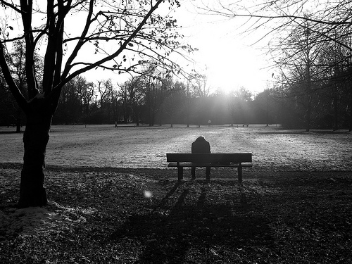 park bench man photo
