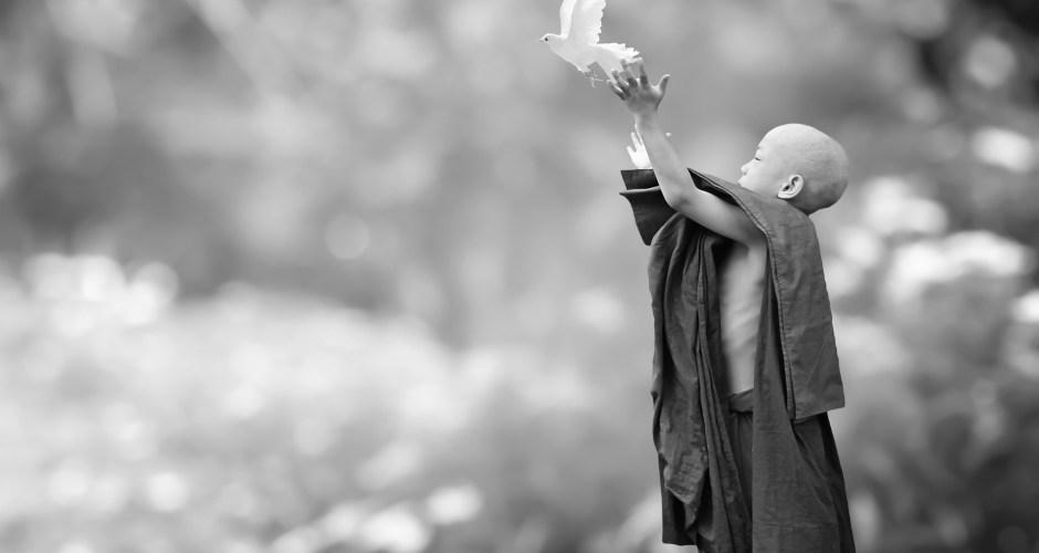 #Idea – Happiness / Kindness / 08.01.21