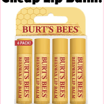 Cheap Burt's Bees Lip Balm On Amazon With New Coupon!!!