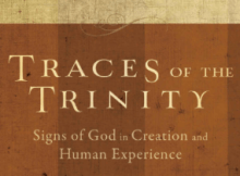 Books I Have Read: Traces of the Trinity