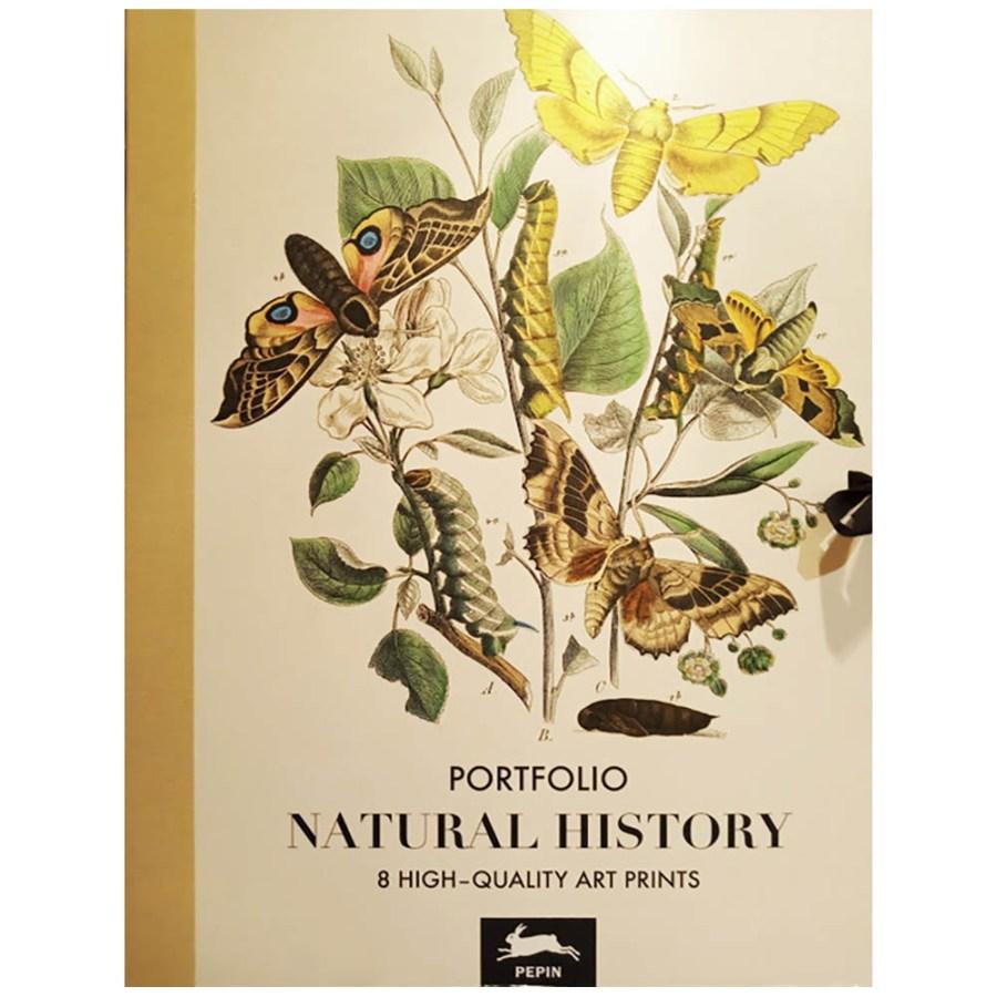Portafolios Carpeta Natural History