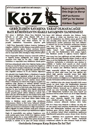 thumbnail of Koz_2013_09_ozelsayi