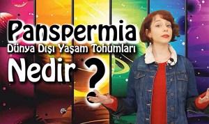 Video: Panspermia Teorisi (Yaşamın Dünya Dışından Gelmesi) Nedir?