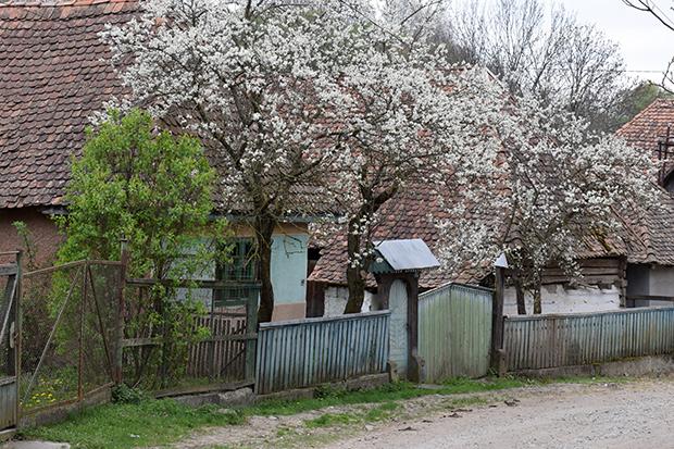 Fotós túra a falusi utcaképért (13)