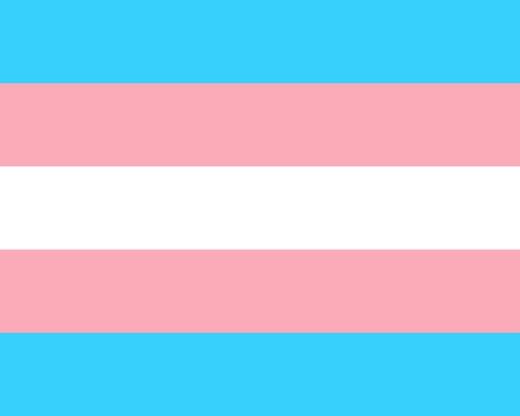 trans, trans flag, transgender