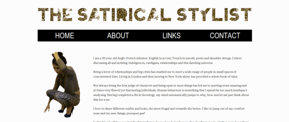 About | The Satirical Stylist