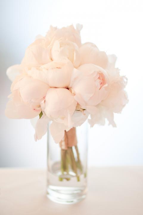 blush-peonies