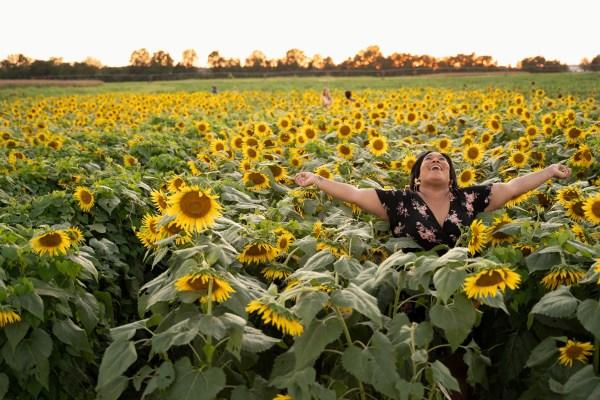 Floral dress sunflower field