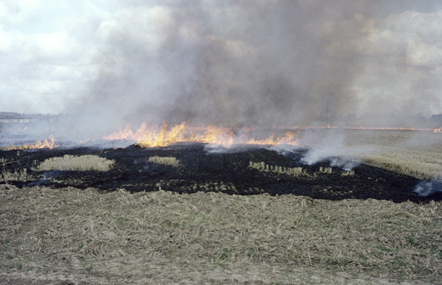 Punjab- Not all farmers burn stubble  #mustshare