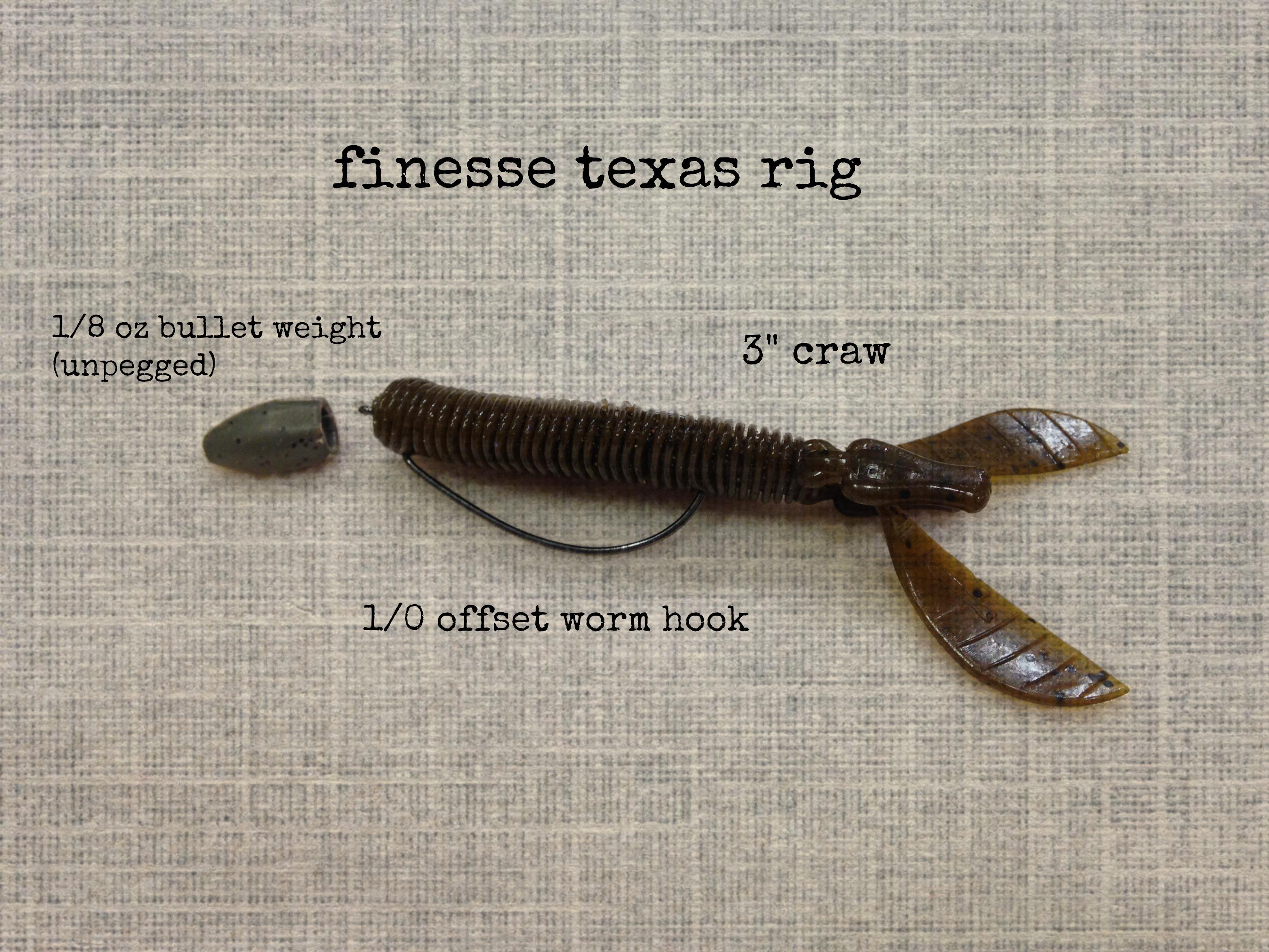 Image result for soft plastic bait set up