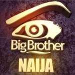 10 Most Beautiful Big Brother Naija Female Housemates