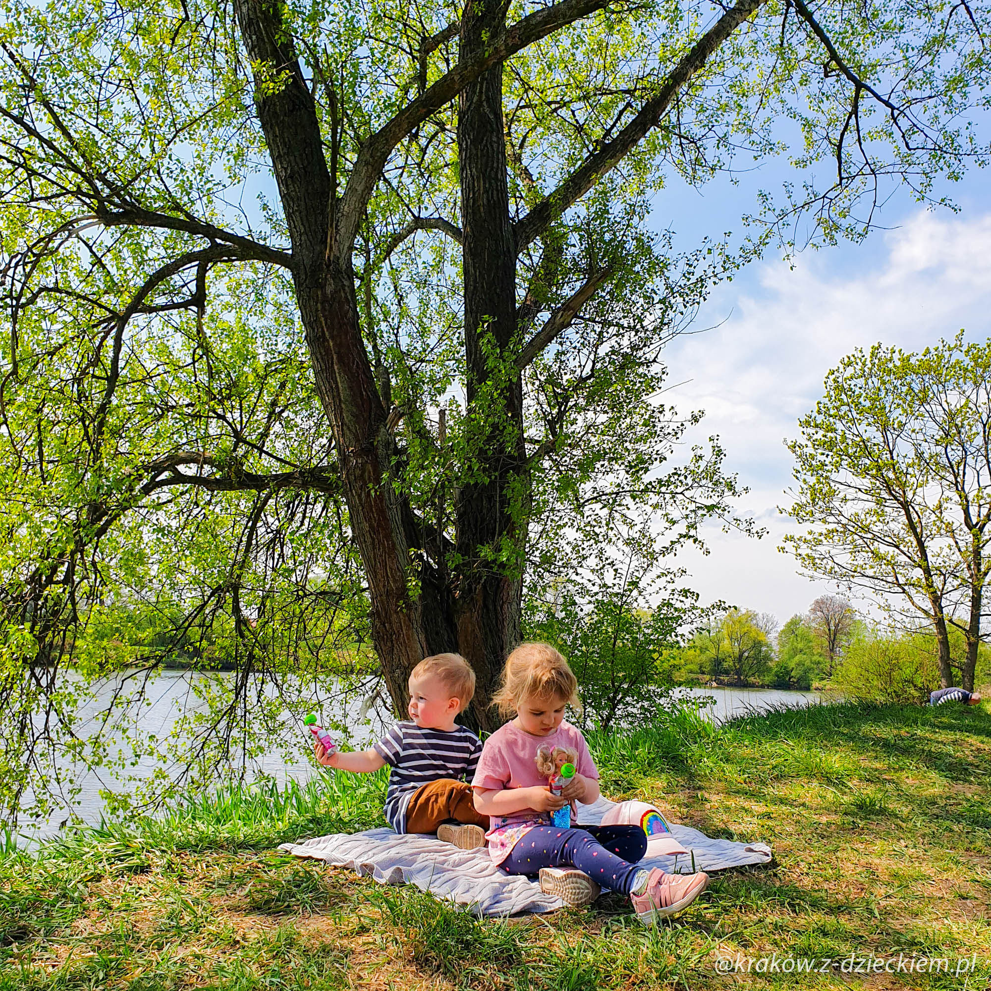 piknik nad wisłą