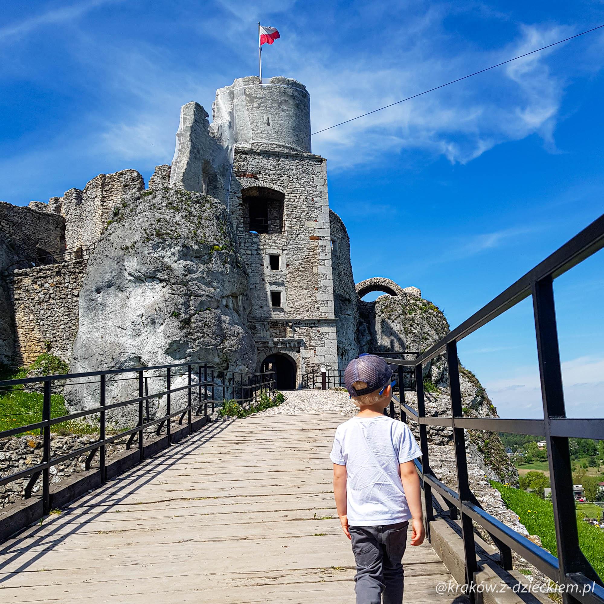 dziecko i zamek w ogrodzieńcu