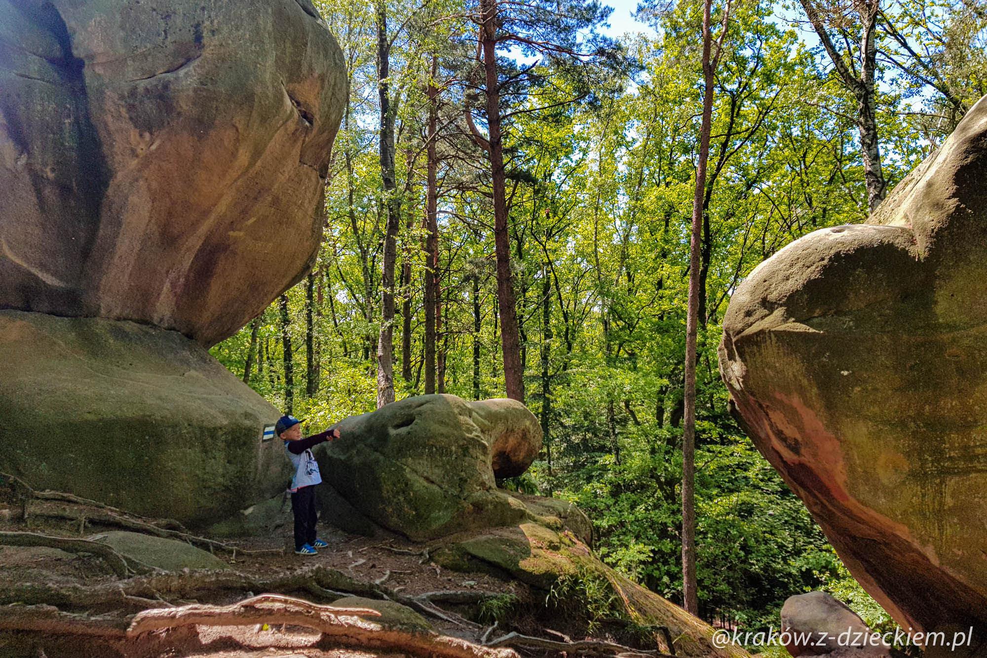 skały ciężkowice, skamieniałe miasto