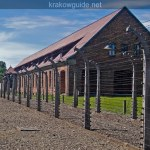 Some Auschwitz pictures