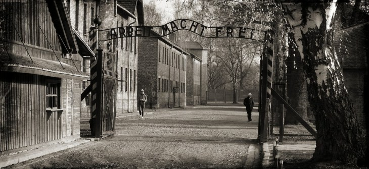 How much time is needed in Auschwitz?