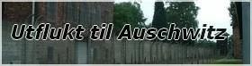 UTflukt til Auschwitz fra Krakow