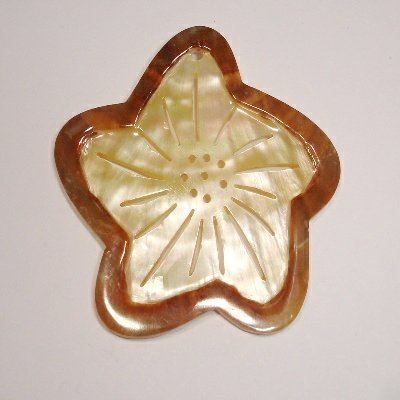 bloem schelp ca. 45 mm