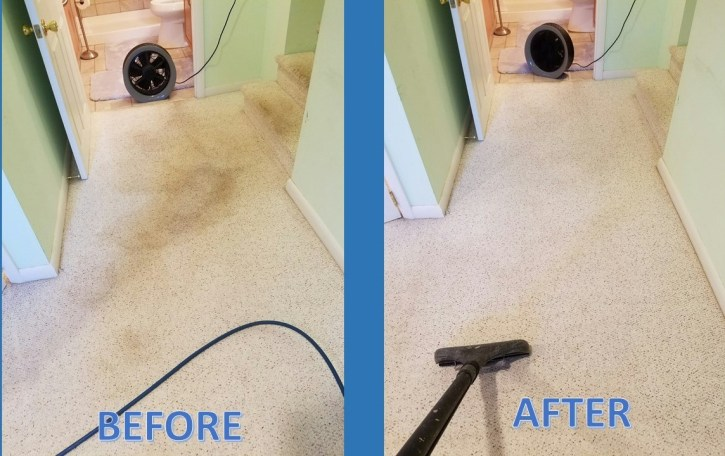 carpet clean spots