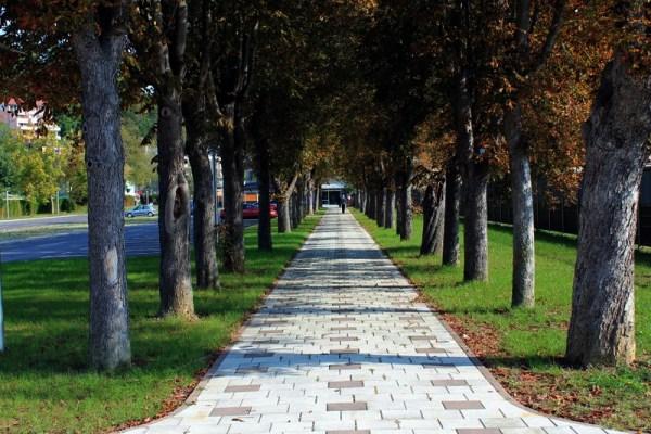 Krapinske Toplice aleja