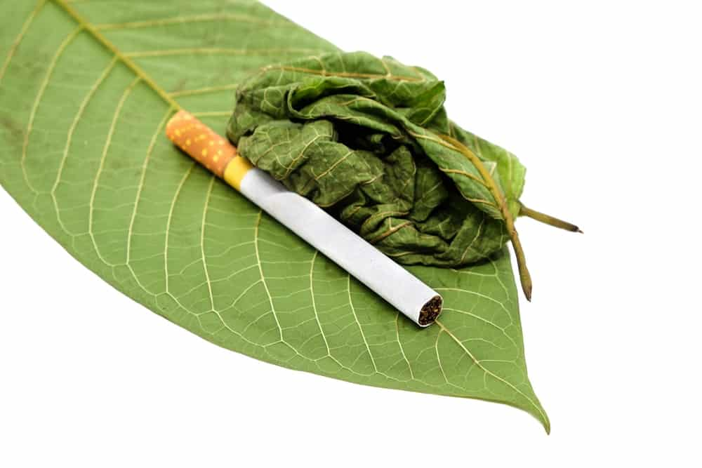 can you smoke kratom