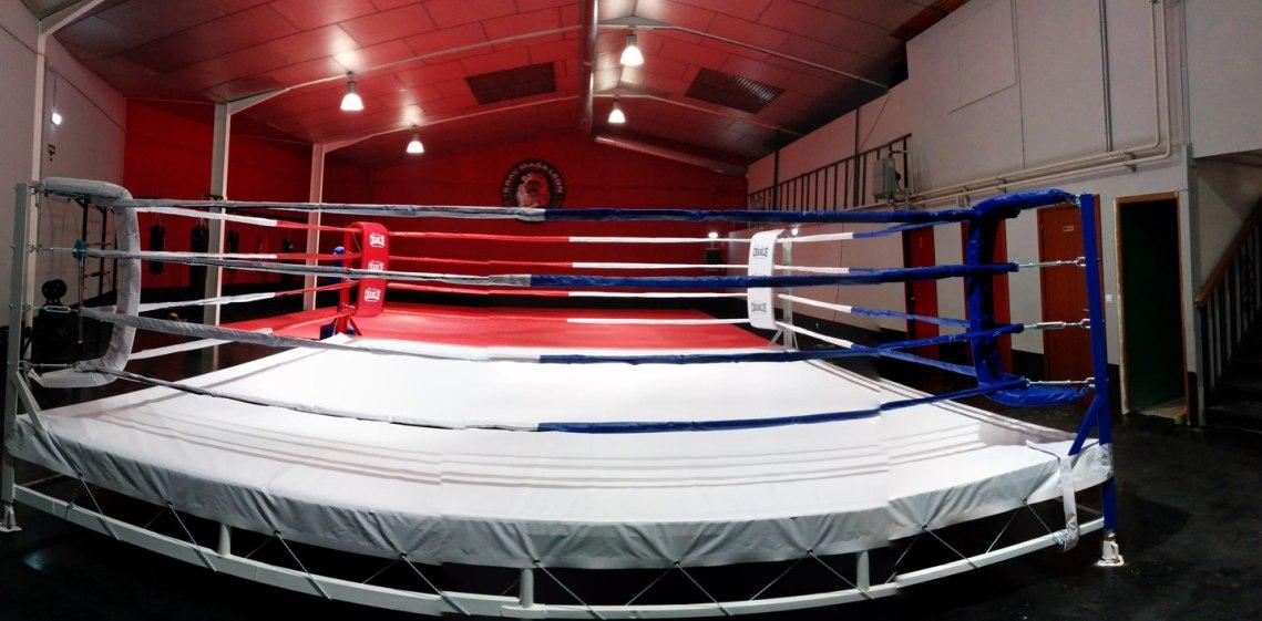 ring de boxeo