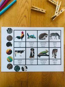 Jeu sur les animaux pour enfant