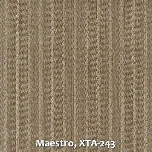 Maestro, XTA-243