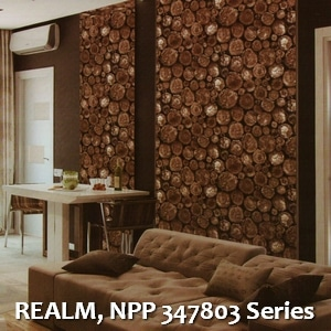 REALM, NPP 347803 Series