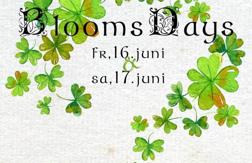 BloomsDays auf dem Kreativhof in Kunrau