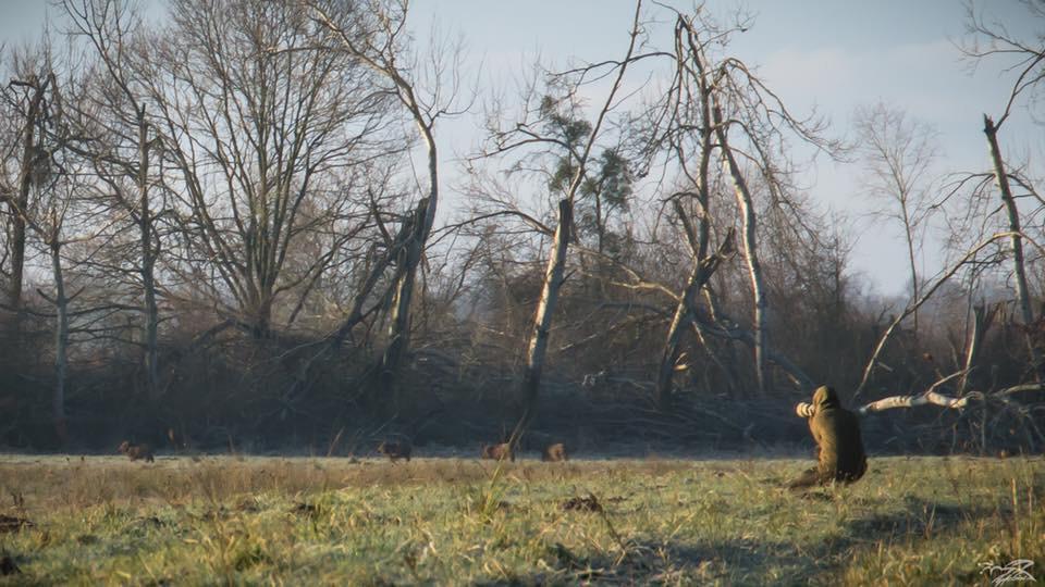 Fotokurs Kunrau Wildlife Fotografie