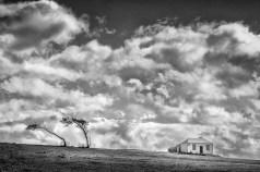 Australia - Tasmania - Maria Island - Wild Sky