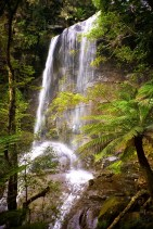 Australia - Tasmania - The Great Western Tears - A Waterfall