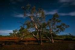 Australia - WA - Karijini 01