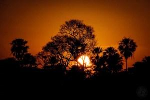 Brazil - Pananal - Sunrise 02