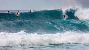 Hawaii - Oahu 004 North Shore - Surfer