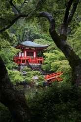 Japan - Kyoto - Kyoto - Schrein