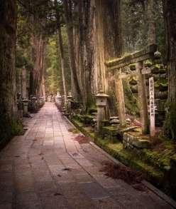 Japan - Wakayama - Koyasan - Okunoin 07