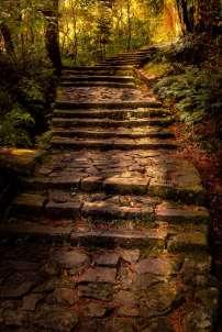 Japan - Wakayama - Nachi - Treppenweg 01