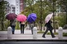 Street Photography - Japan - Umbrellas
