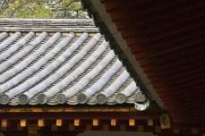 20100505_092101-IMG_9266_ji copy