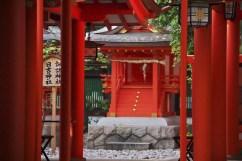 20100508_090120-IMG_0269_ji copy