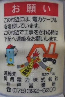20100511_064914-IMG_0406_ji copy